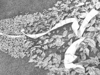 FlyBy, detail. Jennifer Celio, Graphite pencil on Yupo paper, 2012