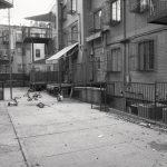 Courtyard photo by William Castellana